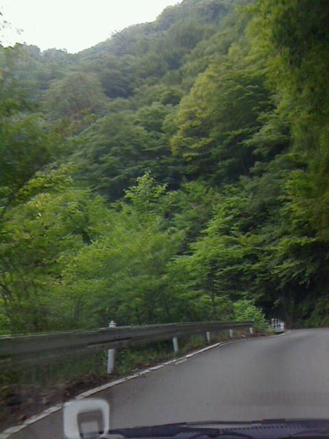 御巣鷹山へ(<br />  5)